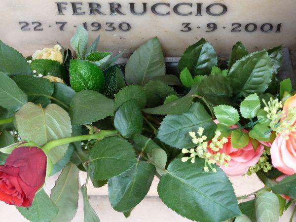 Ferruccio 1 -