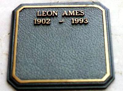 Leon 5 -
