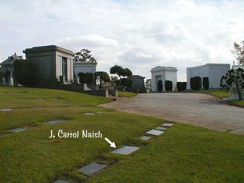 Naish -