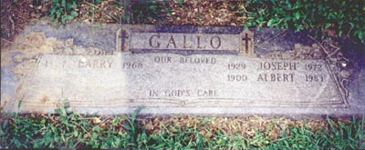 gallolarry -