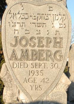 joseph amberg sonehead -