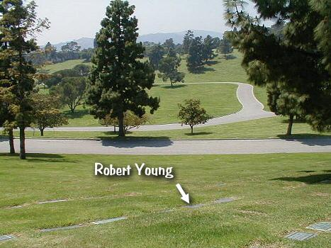 Robert 3 -
