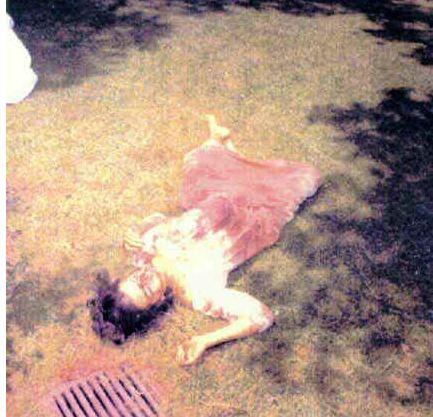 crime scene picture -
