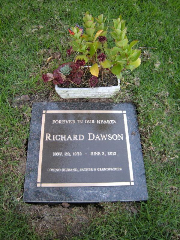 Dawson 2 -