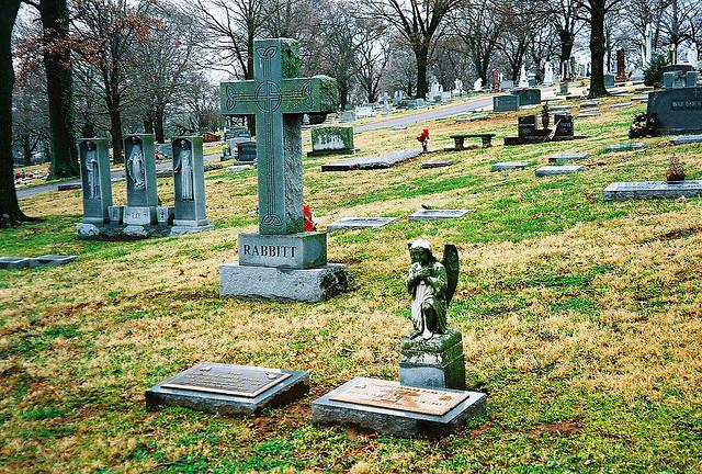 Eddie grave -