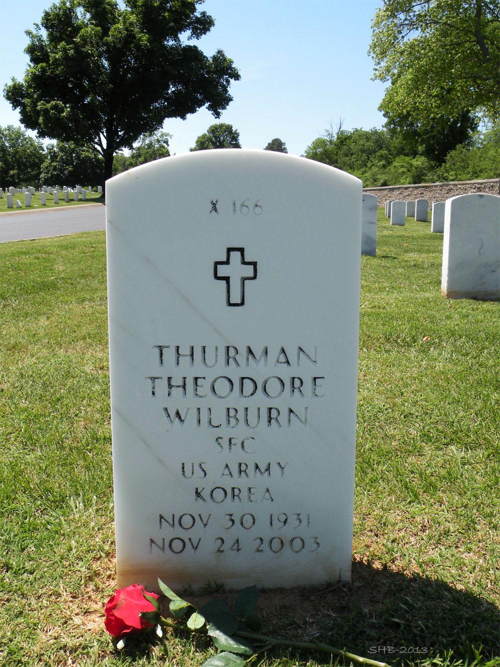 Terry Grave -
