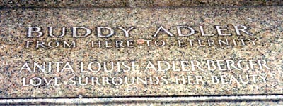 adlerbuddy -