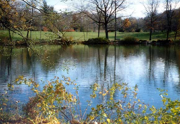 eliot-ness3 - This is the lake behind his grave where his ashes were scattered
