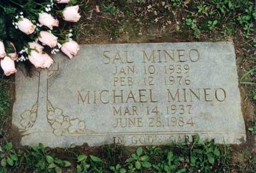 mineosal -