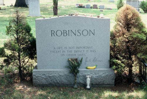 robinson2 -
