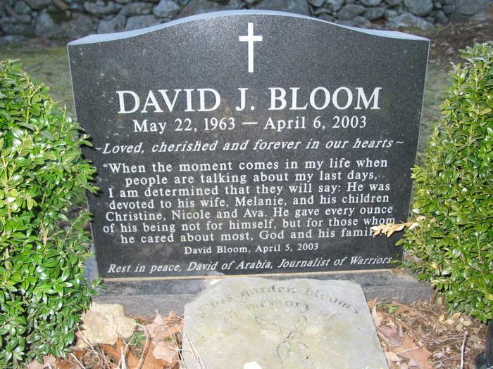 Bloom 2 -