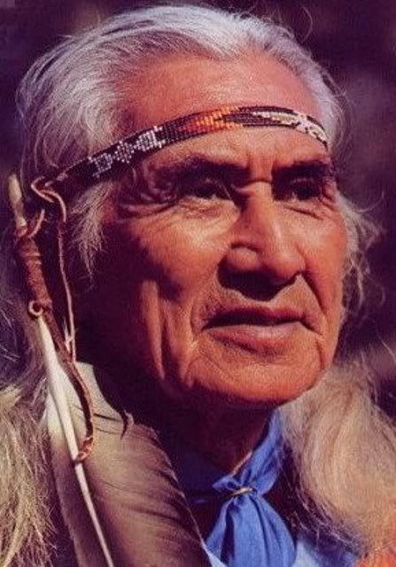 ChiefDanGeorge1 -