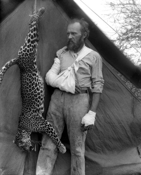 akeley-leopard -