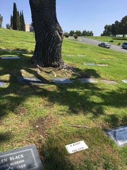 Marty Allen grave -